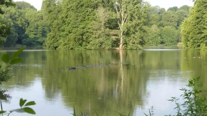 Lac du Lambon 3.jpg