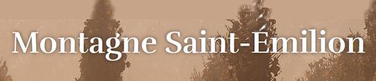 Syndicat viticole - Maison des vins de Montagne Saint-Emilion
