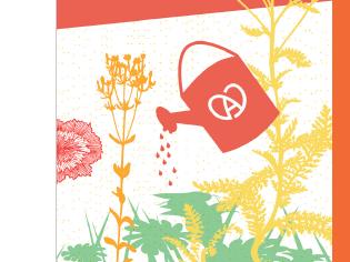 Concours Maisons fleuries 2020 - Echinacea.JPG