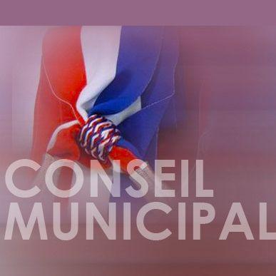 Conseil-municipal.jpg