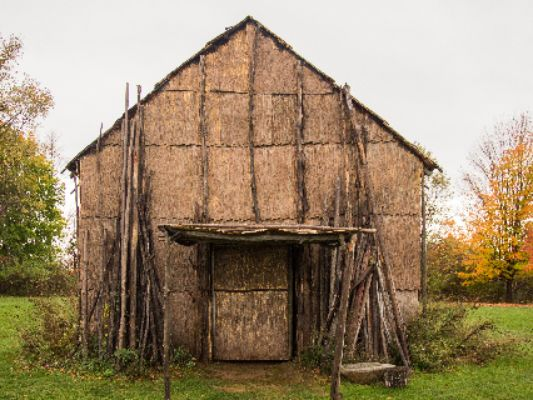 old-wooden-barn-surrounded-by-trees-in-field-under-cloudy-sky-at-daytime.jpg