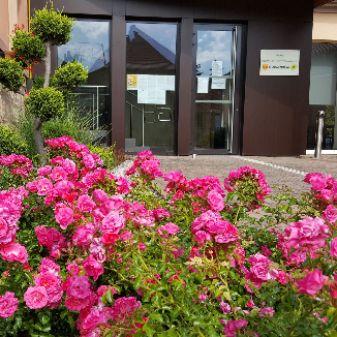 Entrée mairie roses.jpg