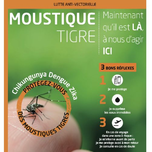 MoustiqueTigre_Reflex_A3.jpg