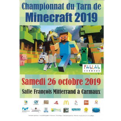 Championnat du Tarn de MINECRAFT 2019