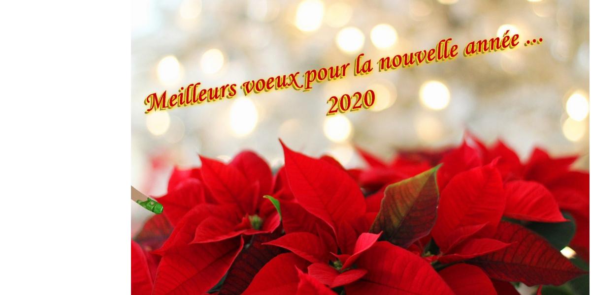 voeux de nouvel an