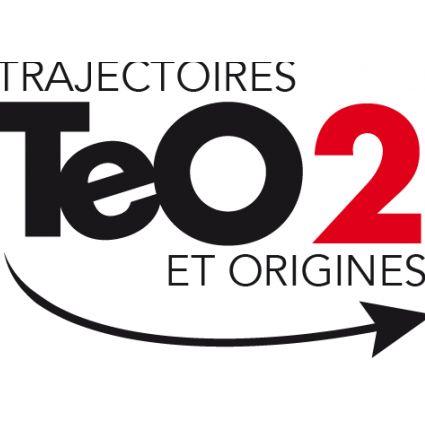 Logo - TeO2.png