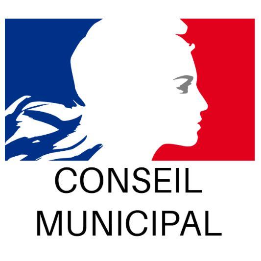 conseil_municipal.jpg
