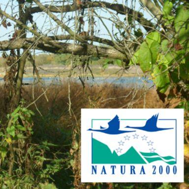 Marais - Natura 2000