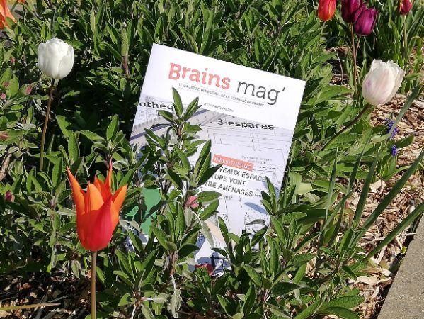 Le Brains mag' du printemps 2019 est en ligne