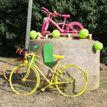 Tour de France _14_.jpg