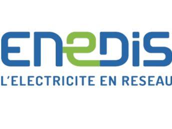 enedis-logo.png