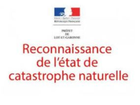catastrophe naturelle.jpg