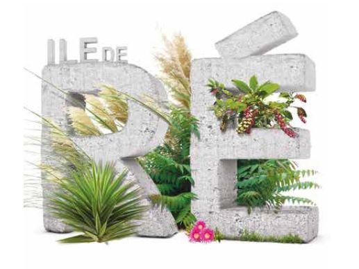Nouvelle brochure sur les plantes invasives