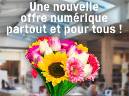 Des ressources en ligne gratuites avec la Médiathèque Départementale de l'Isère