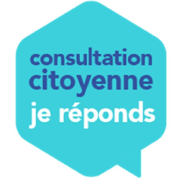 logo consultation citoyenne.png