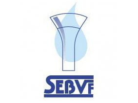 SEBVF_logo.jpg