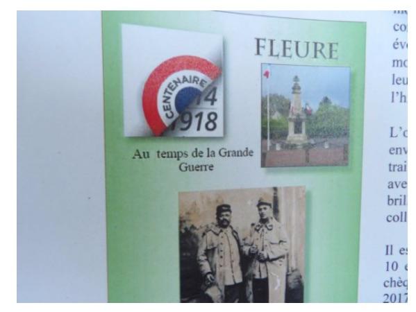 FLEURE AU TEMPS DE LA GRANDE GUERRE.jpg