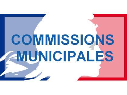 commissions-municipales-boe.jpg