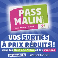 250x250_CARRE_PassMalin_HDS_Yv.png