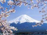 japon01.jpg