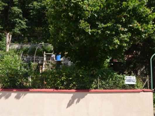 Jardins partagés  _1_.JPG