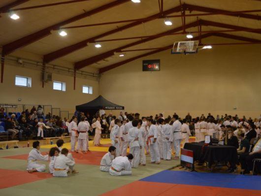 Judo _1_.JPG