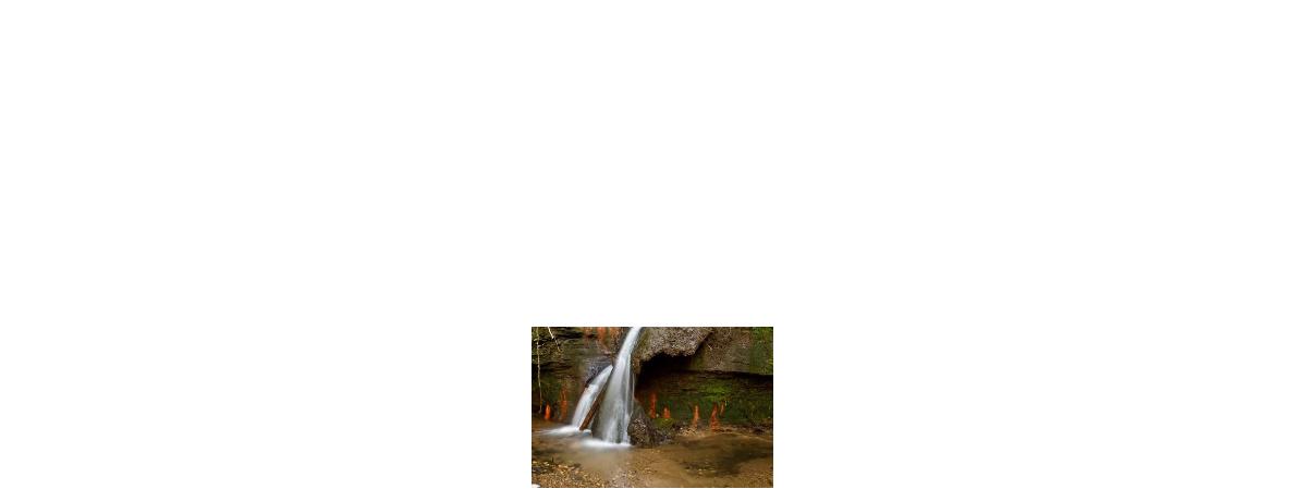 Plan d'eau des Orlaux : Aménagements disponibles