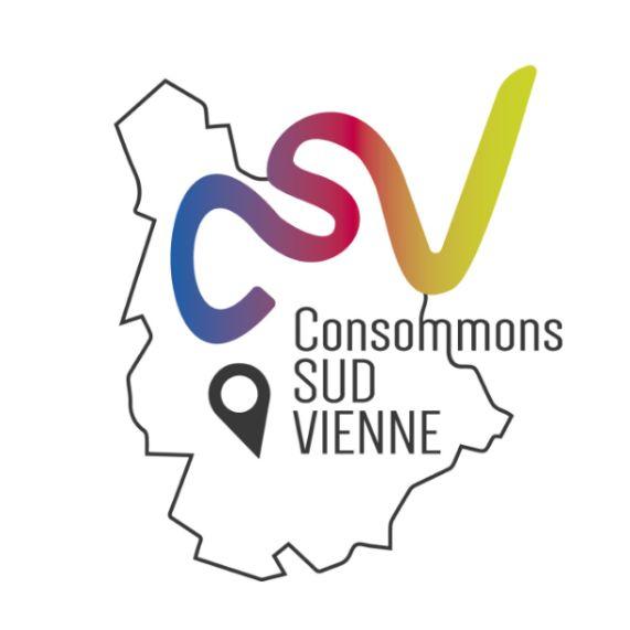 thumbnail_Logo CSV - COULEUR.jpg