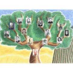 arbre généa.jpg